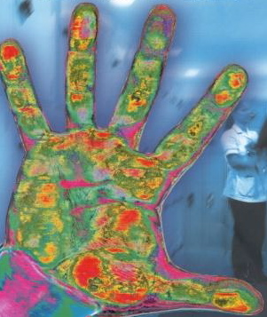 Hand germs
