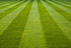 Lawn Stripes, East to West