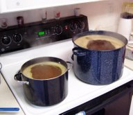 Beer brewing on a stove
