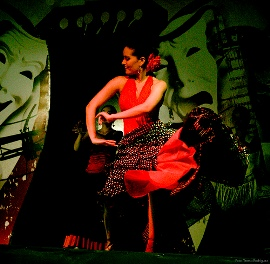 Flamenca Dancer