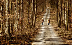 Walking the winter road together