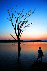 Teen and leafless tree