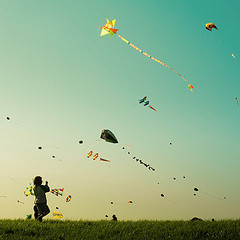 Joy of Flying Kites