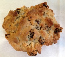 Oatmeal-Raisin Cookie