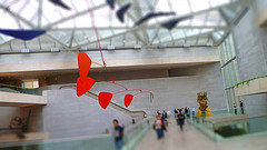 Calder Mobile in the East Wing of the National Gallery of art