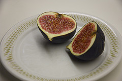 Offered the fig